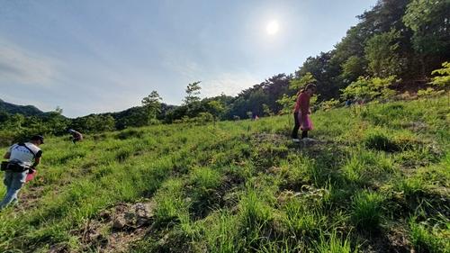 调查:近八成韩国人计划今年在国内短途游