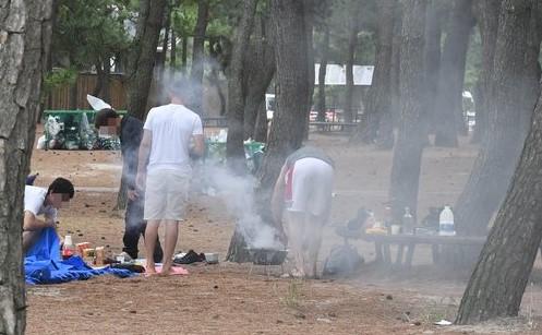 资料图片:露营族在林内生火做饭。 韩联社