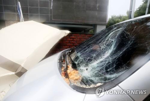 """第8号台风""""巴威""""登陆济州带来强风大雨"""