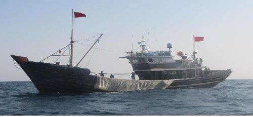 报告:近5年韩国抓获1704艘非法捕捞中国渔船