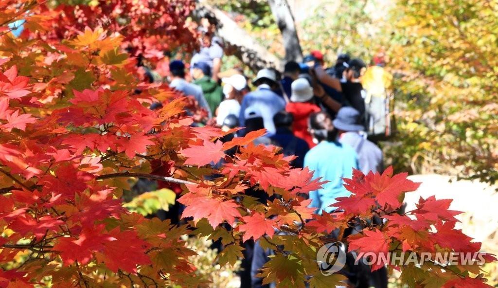 调查:七成韩国人疫后最想旅游