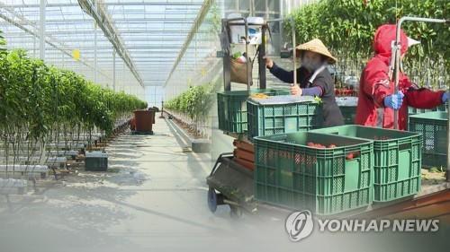 韩国2021年外劳名额敲定为5.2万人