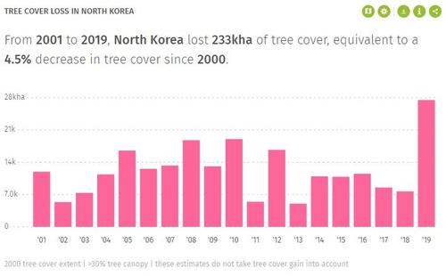 资料图片:据全球森林观察(GFW)3月3日发布的统计,2001年至2019年,朝鲜森林面积缩减23.3万公顷。 韩联社/GFW供图(图片严禁转载复制)