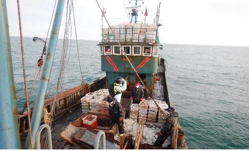 韩国海洋水产部3月5日表示,4日下午7点30分许,海洋水产部旗下西海渔业管理团在全罗南道新安郡黑山面红岛西北方向约38.9公里海域抓获了进行非法捕捞的中国双拖网渔船——鲁荣渔A号和B号,并对其进行的登船调查。韩方将对其处以罚款。 韩联社/海洋水产部供图(图片严禁转载复制)