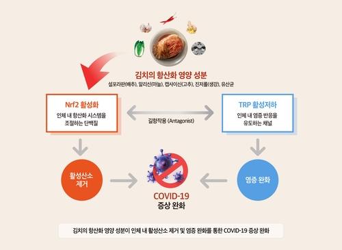 韩泡菜研究所:泡菜有助于减轻新冠症状