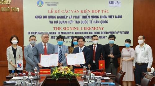 6月17日,韩国国际合作机构(KOICA)在越南河内同越南农业与农村发展部、国家农业大学签署关于培养畜牧高级人才的会议纪要。 KOICA供图(图片严禁转载复制)