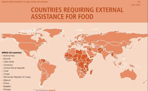 联合国报告:逾四成朝鲜居民营养不良