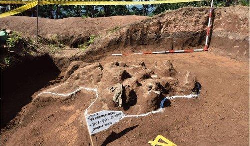 韩美将在韩国东北部联合挖掘韩战阵亡者遗骸