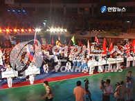 世界跆拳道文化博览会在全州开幕