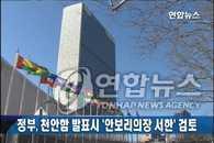 政府考虑发布结果后向联合国安理会致函