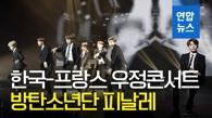 文在寅观看韩法友谊演唱会 BTS登台助兴