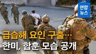 韩美针对朝鲜联演奇袭基地生擒首长
