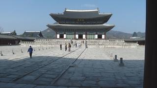 疫情下韩旅游收入跌至9年来新低