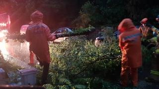 韩国遭强风暴雨致3人死亡1人失踪
