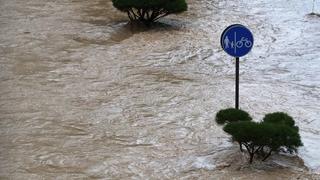 """台风""""黑格比""""即将来袭 韩中部地区遭暴雨袭击"""