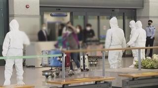 164名在印韩企员工乘撤侨航班回国