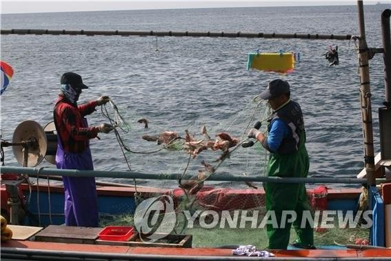 韩政府公布水产业新规划 重点恢复渔业资源