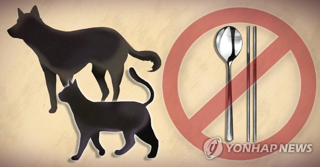 韩青瓦台关注禁食狗肉请愿