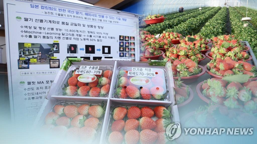 韩2018年新鲜农产品出口总额增幅均创新高