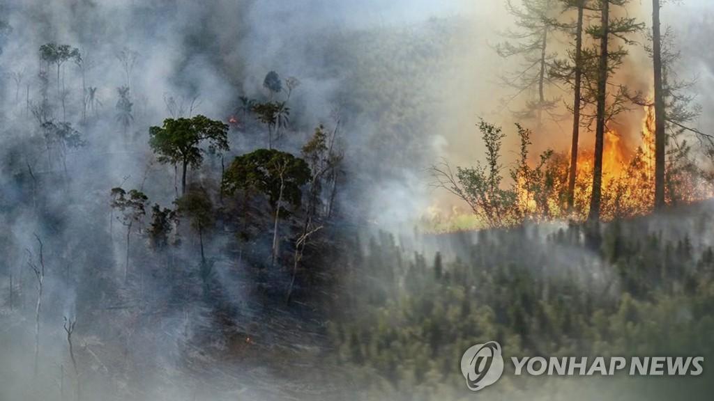 朝鲜提出力争到2030年碳减排16.4%