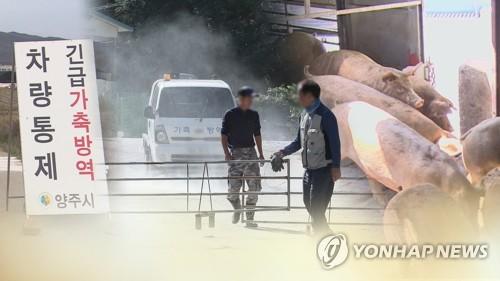 韩国拟指定非洲猪瘟疫情重点管理地区