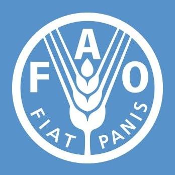 韩国连续12届当选粮农组织理事国