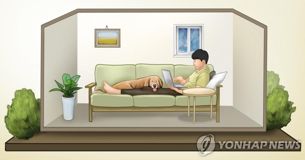 统计:韩国2人以下微型家庭占比近六成