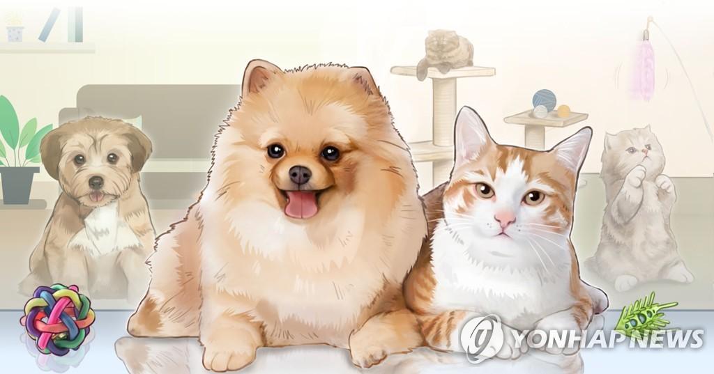 韩法务部就赋予动物法律地位法条草案征求意见