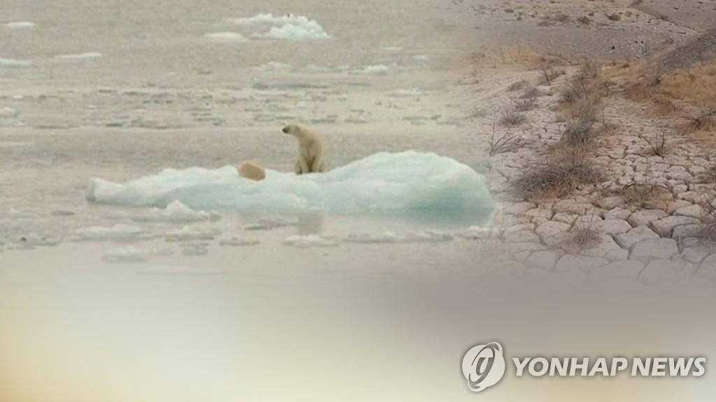 民调:九成韩国人盼将气候问题纳入大选议题