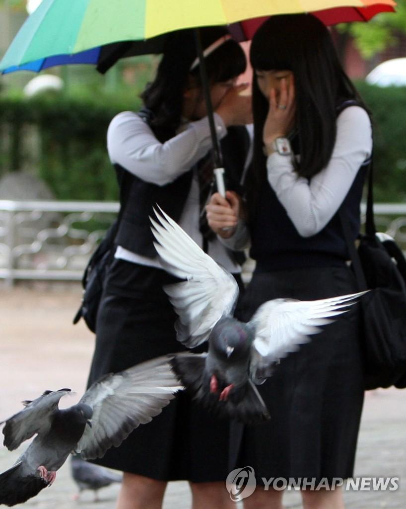 鸽子,你离我远远的