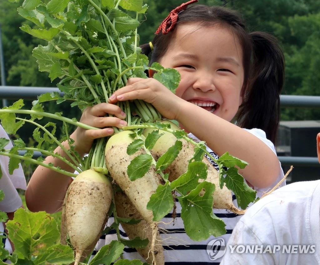小农夫享丰收喜悦