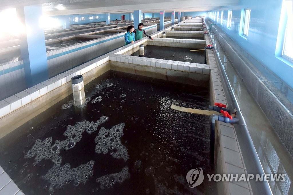 韩中首次举办放流鱼苗活动