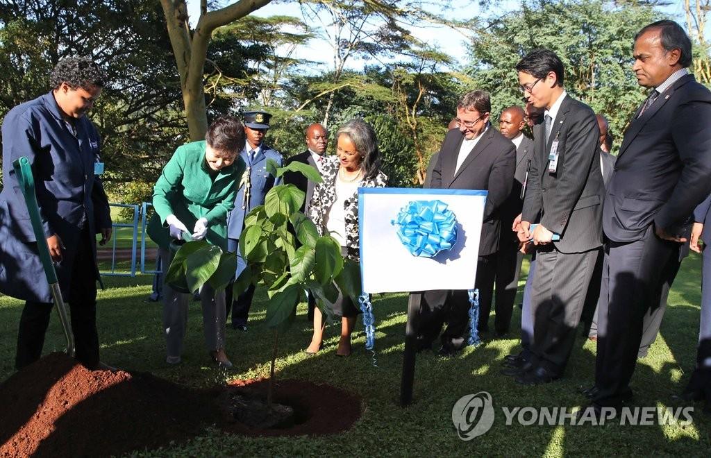 朴槿惠访问联合国内罗毕办事处并植树纪念