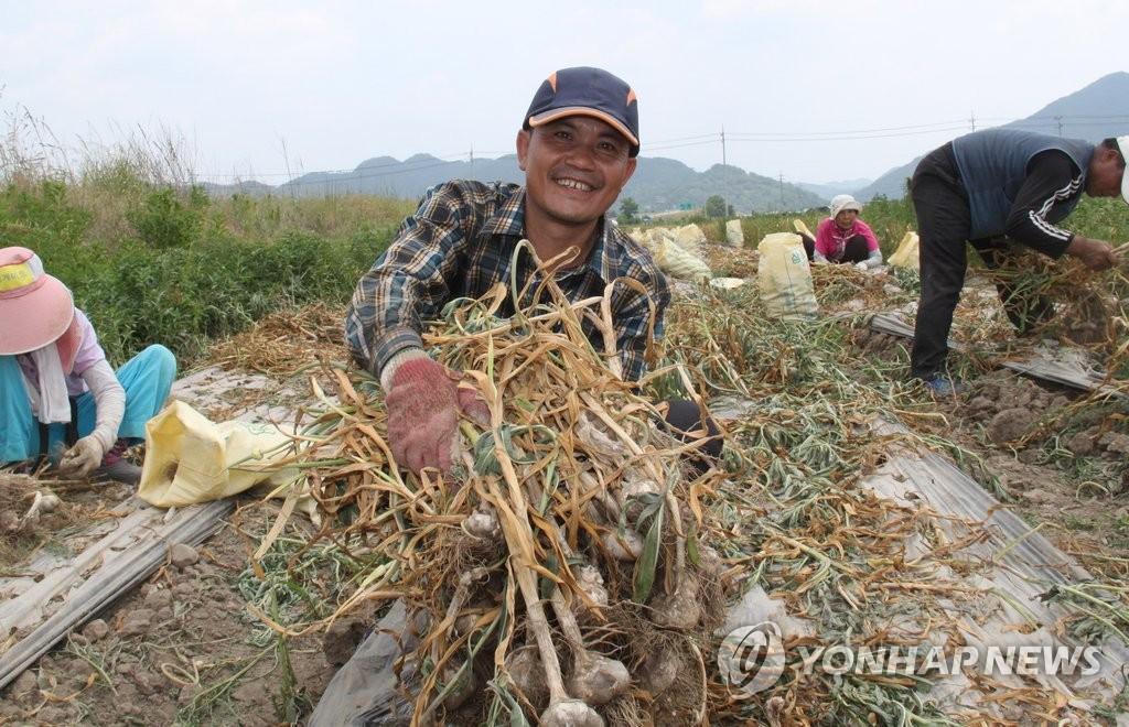 资料图片:外籍务工人员 韩联社