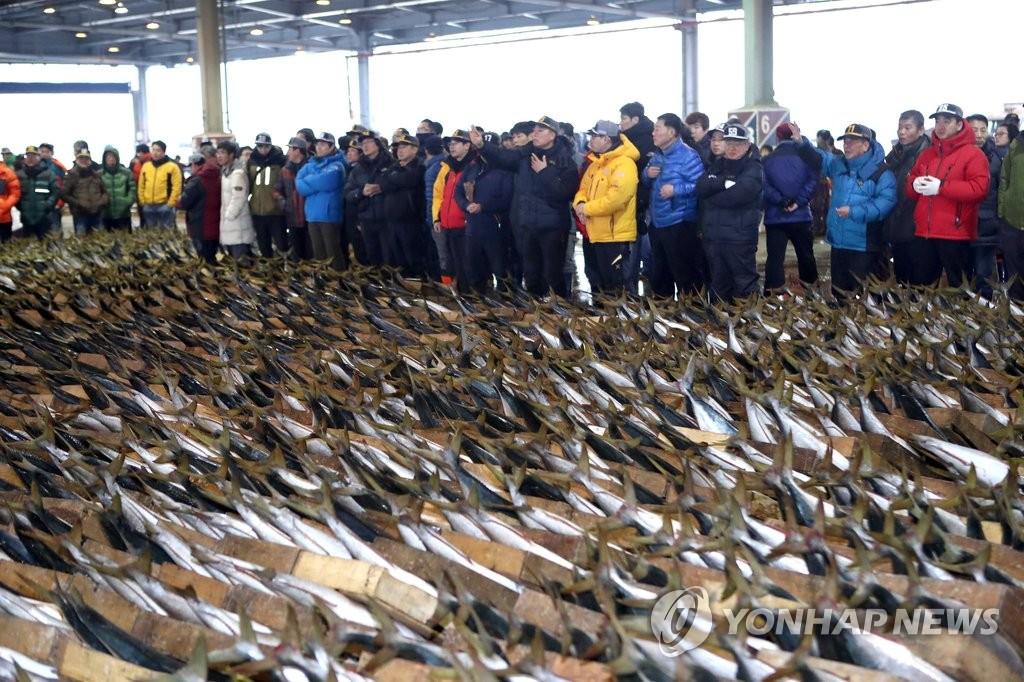 鱼市新年首拍卖人气旺