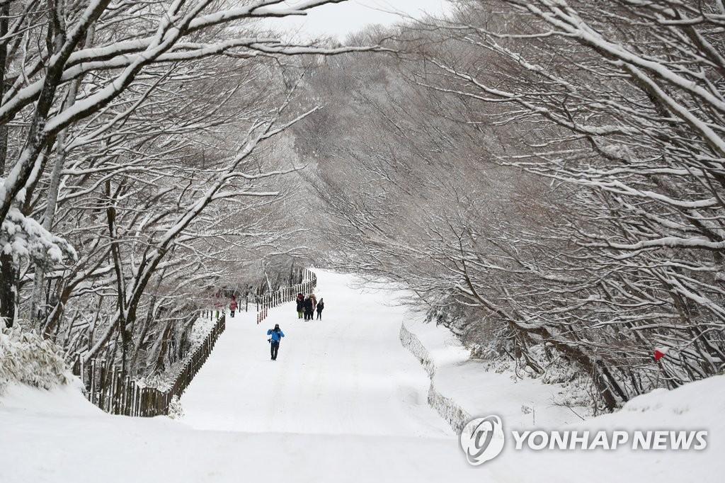 汉拿山美丽雪景