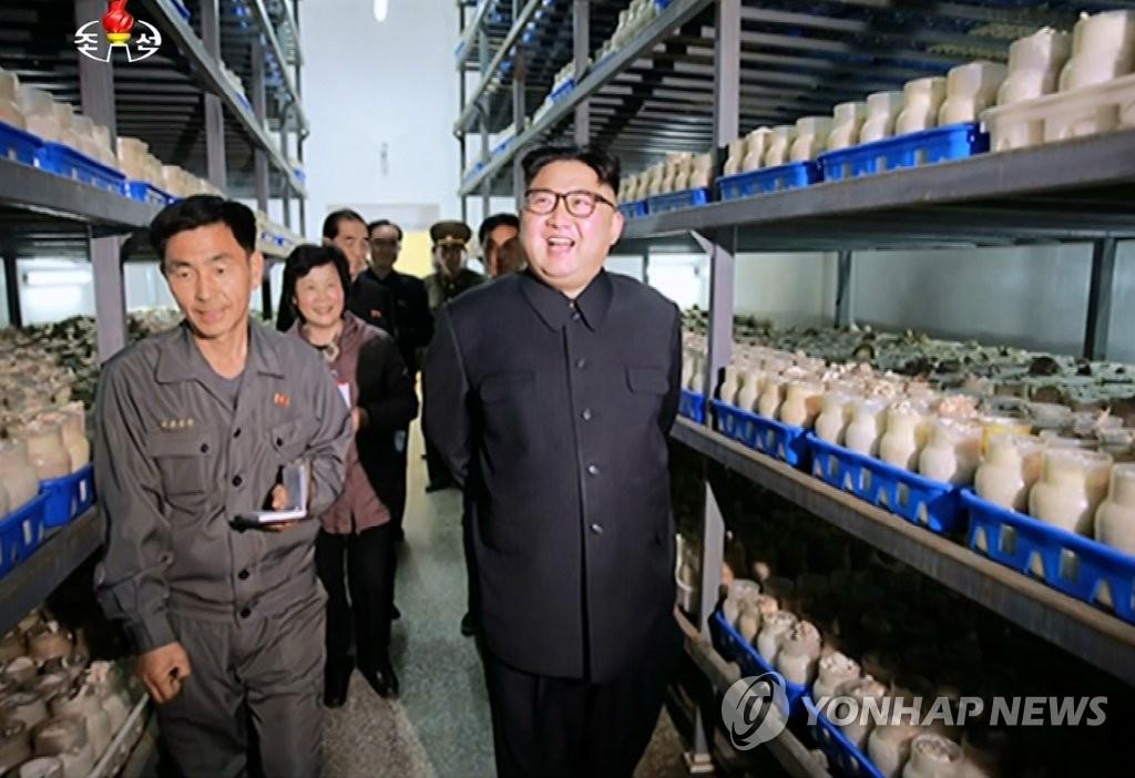 资料图片:2017年4月,金正恩视察了平壤蘑菇种植厂,并立志要将朝鲜打造成蘑菇之国。图片仅限韩国国内使用,严禁转载复制。(韩联社/朝鲜央视)