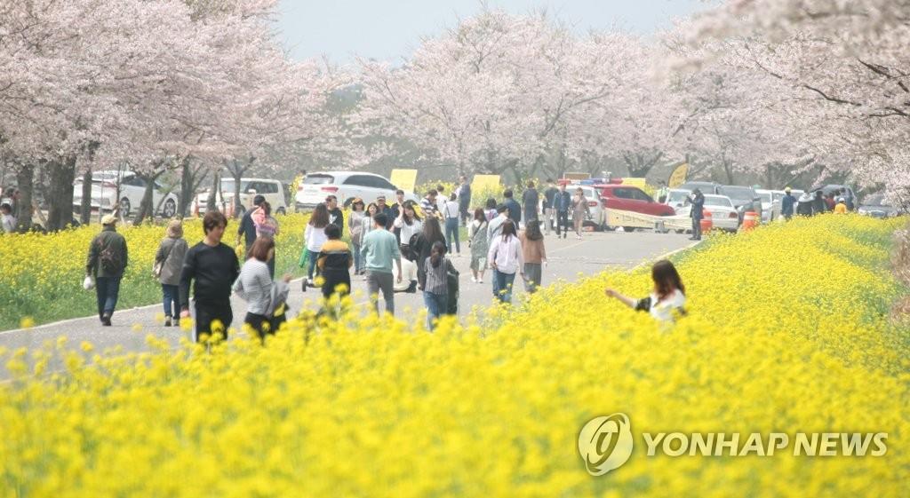 中国禁售韩国游产品一个月 济州游客不减反增