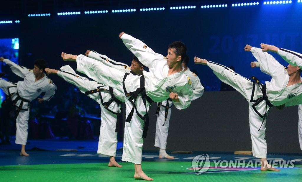 朝鲜跆拳道示范团表演
