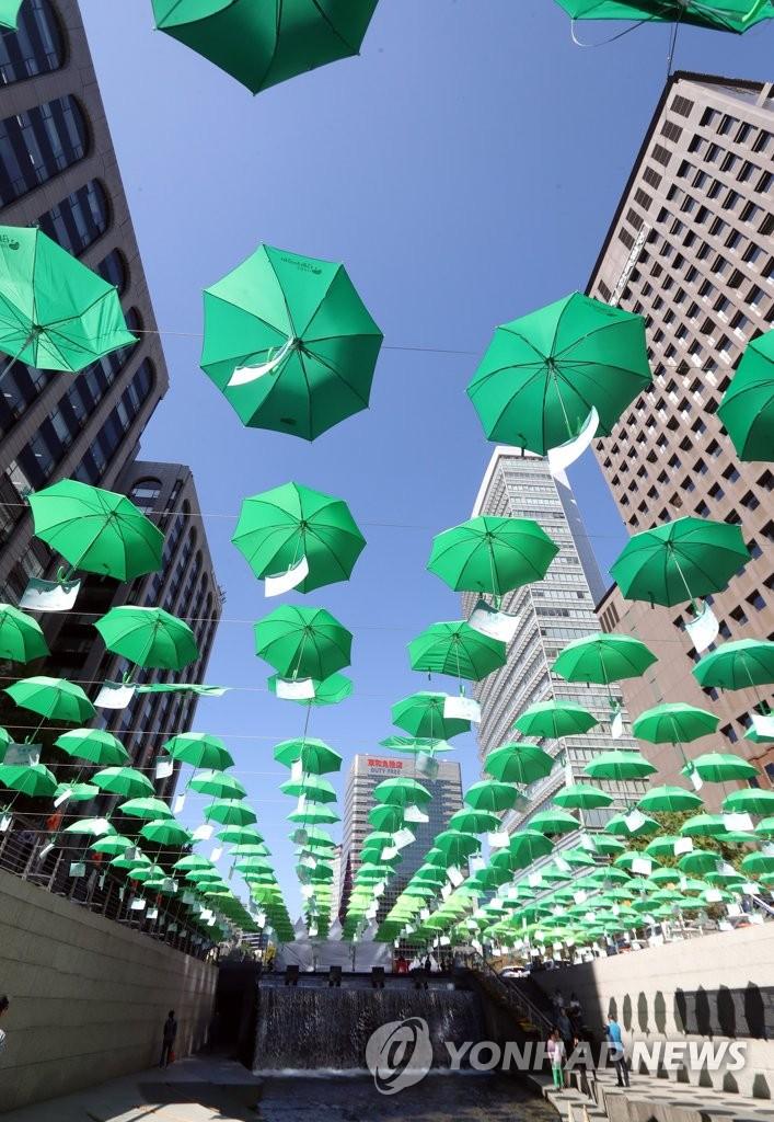 顶顶绿伞撑起一片蓝天