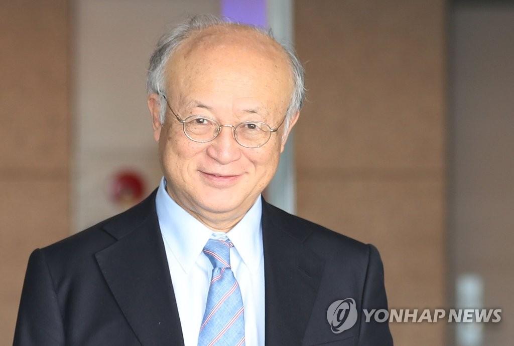 国际原子能机构总干事访韩