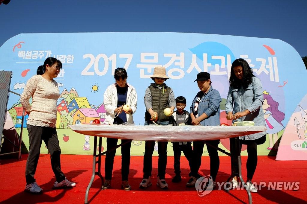韩国闻庆苹果节