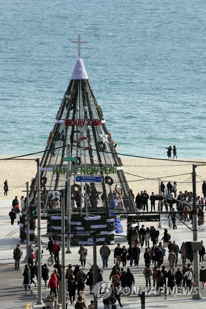 大型圣诞树现身海云台