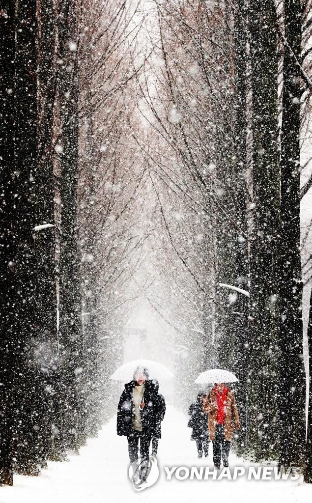 雪中的光州