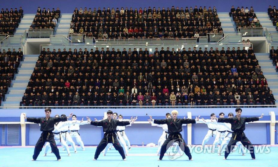 韩国跆拳道示范团在朝表演