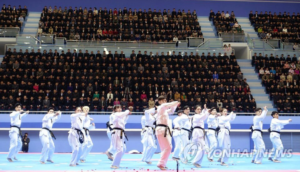 韩国跆拳道示范团在平壤演出