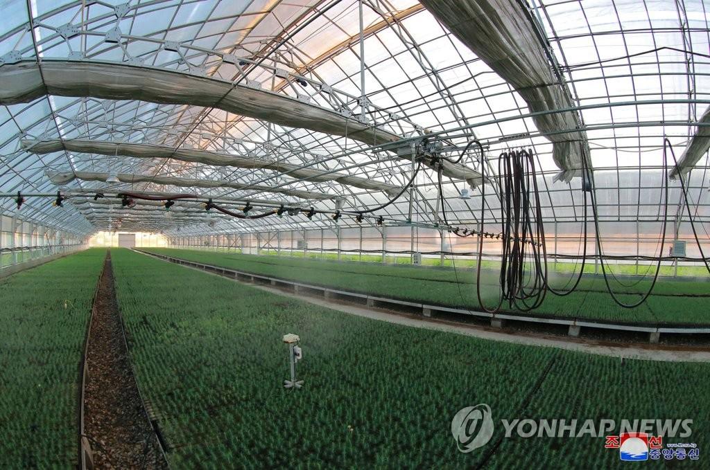 韩朝山林合作项目韩方考察团访朝归来
