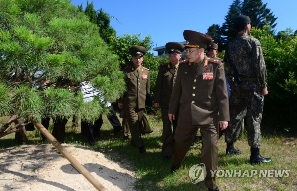 朝军将领参观文金会纪念树