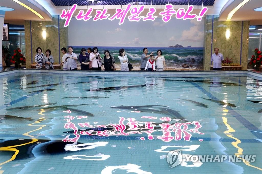 9月19日,在平壤大同江水产品餐馆,市民们正在观看餐厅内的鱼池。(韩联社)