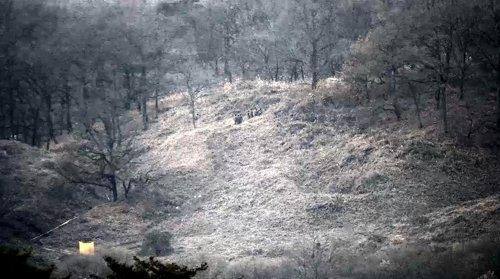 韩朝开始互检边防哨所拆除情况